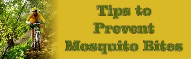 Tips to Prevent Mosquito Bites - EMERGENCY WATER AND SMOKE REMOVAL BLOG - Atlanta Fire, Water & Storm Damage Restoration | Champion Construc...