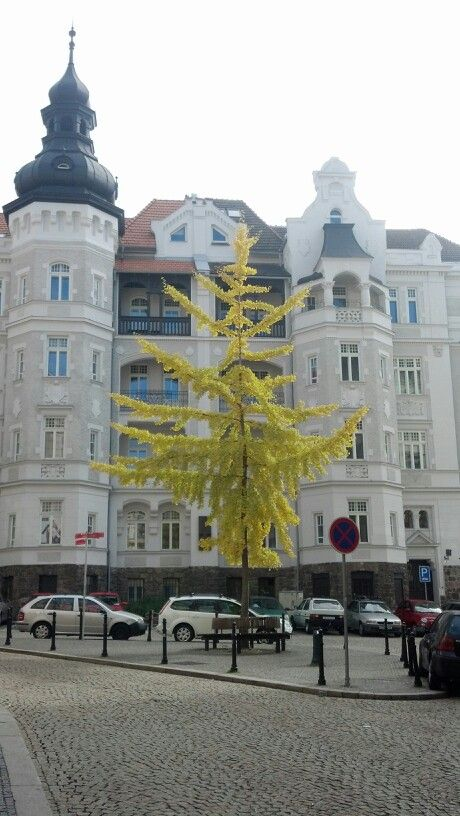 Brno, Moravia, Czechia