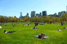 Image result for central park