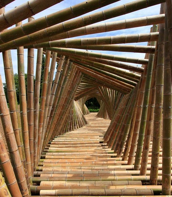Bamboo Tunnel KyotoBambootunnel, Bamboo Tunnel, Walkways, Gardens Paths, Pathways, Places, Bamboobridg, Kyoto Japan, Bamboo Bridges