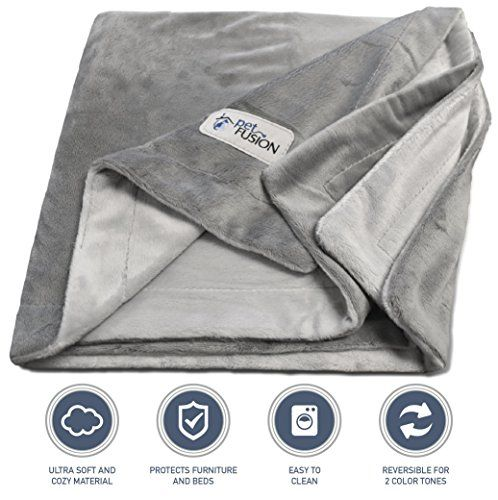 Dog Bed Blankets - PetFusion Premium Large Dog Blanket 53x41 Reversible Gray Micro Plush 100 soft polyester -- More info could be found at the image url. (This is an Amazon affiliate link)