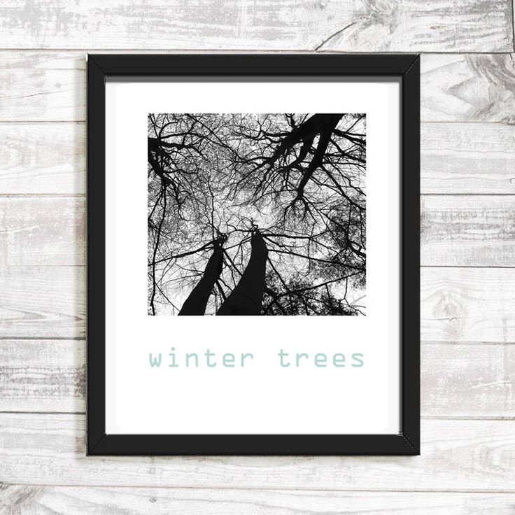 Winter Trees, black and white photography, abstract art, large wall art, wall art print, instant download, printable, poster, quote, nature by FlatlandArtPrints on Etsy