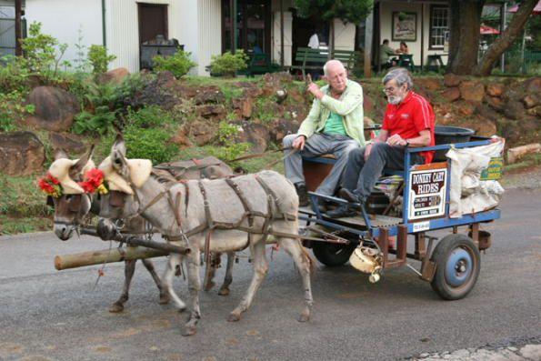 Donkey cart in Pilgrim's Rest