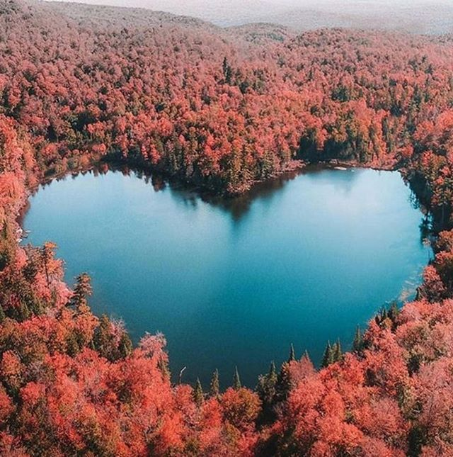 Nice Looking Love Shape Of Water And Forest Good Combination I Am Feeling Happy To Seen This Nature Thanks God Nature Heart In Nature Landscape Photos