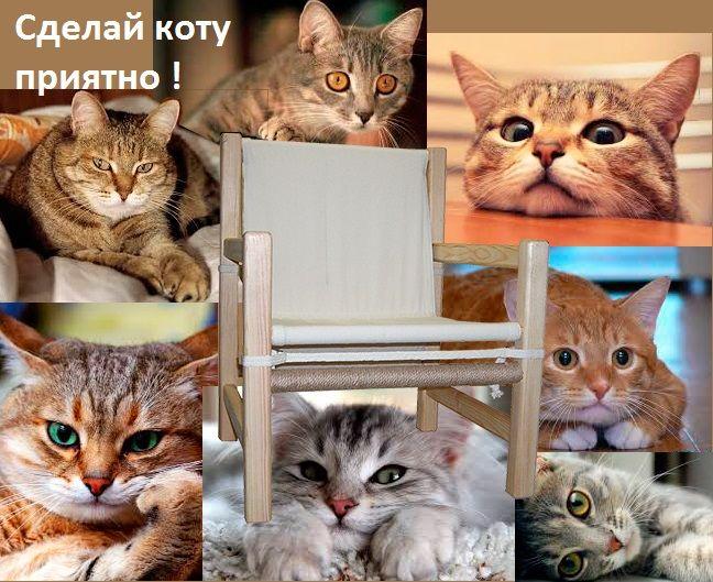 У каждой кошки есть свои предпочтения, где полежать, где посидеть, а куда вообще ни лапой, ни носом. Кошке нужны: игрушки (ведь не у каждого в квартире есть живые мыши);  несколько мест для отдыха  (одного места коту категорически не достаточно). Что нужно хозяину?  Правильный ответ: когтеточка, она же драпка, она же - защита любимой мебели хозяина.   Впервые – защита мебели мебелью! Специально для любителей домашних питомцев! Из натуральных материалов! www.facebook.com/PeopleStr/