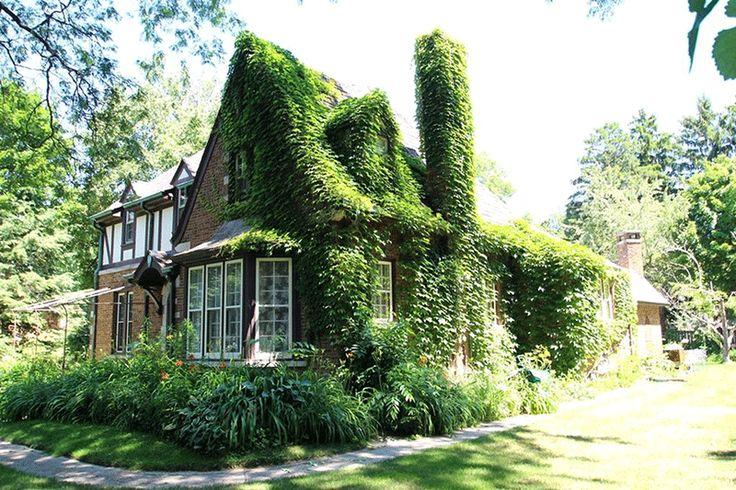 Элмвуд Парк Тюдор Возрождение | CIRCA Старые дома | Старые дома для продажи и исторических Объекты недвижимости