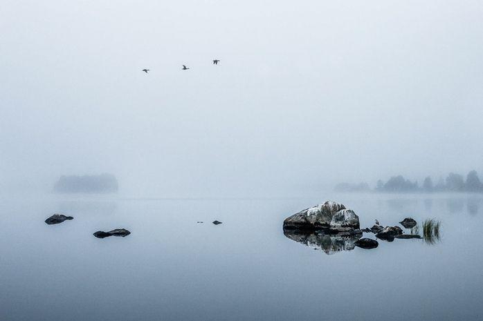 Татьяна Кондакова / Canon EOS 5D Mark II / пейзаж, режимный свет, туман