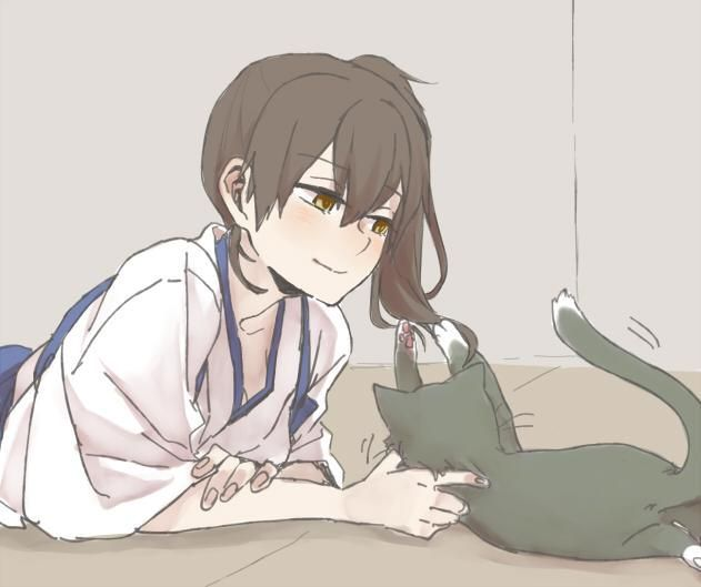 猫と加賀さん