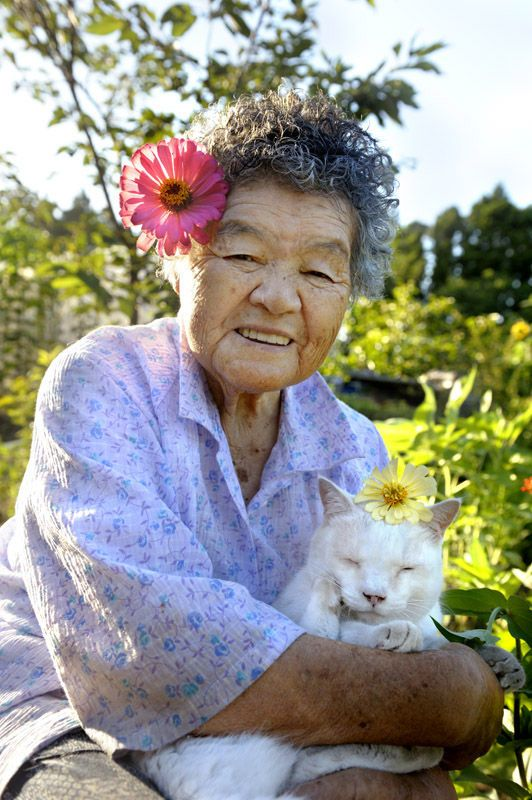 Fukumaru the Cat | MISAO, THE JAPANESE GRANDMOTHER AND HER FRIEND, FUKUMARU THE CAT
