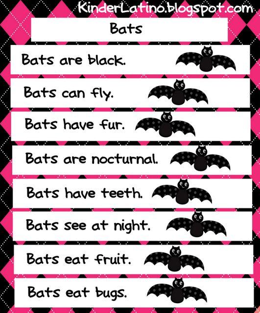 Bat theme  Kinder Latino: Bilingual Teaching Resources