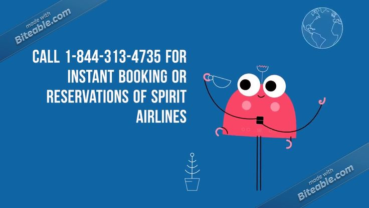 Spirit Airlines Reservations Phone Number.