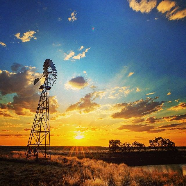 A windmill in the sunset makes for perfect Queensland bucket list photo opportunity  Image by @laurenepbath http://blog.queensland.com/2014/10/24/queensland-instagram-photo-bucket-list/ #thisisqueensland