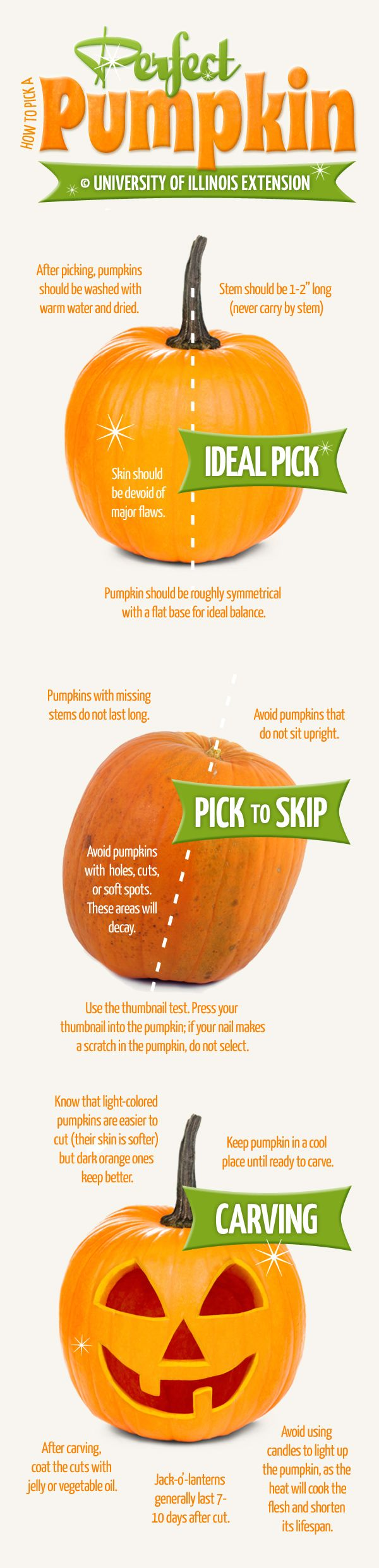 WE ♥ THIS!  ----------------------------- Original Pin Caption: How to Pick a Perfect Pumpkin (+ Carving Tips!)