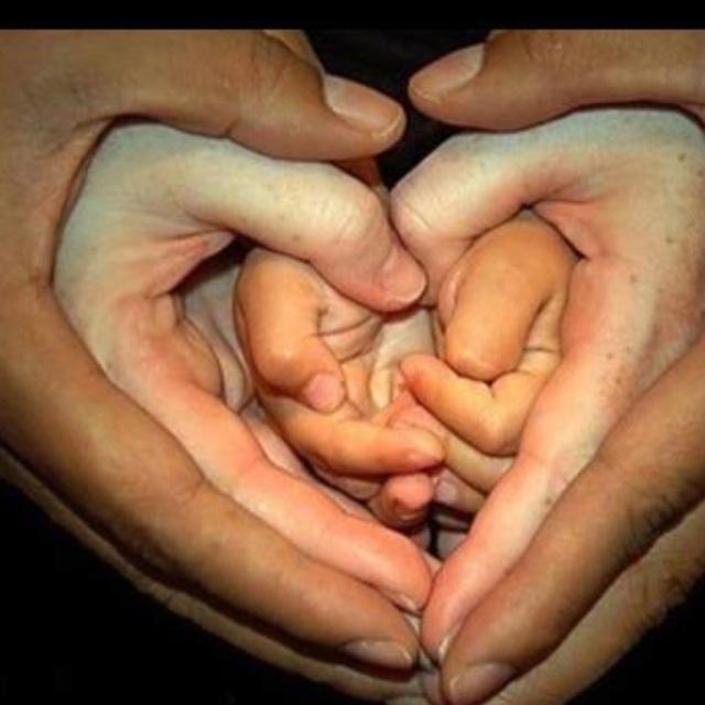 Liefde / love
