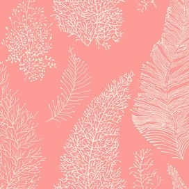 Ashford House  All Over Coral Spot Wallpaper In Coral