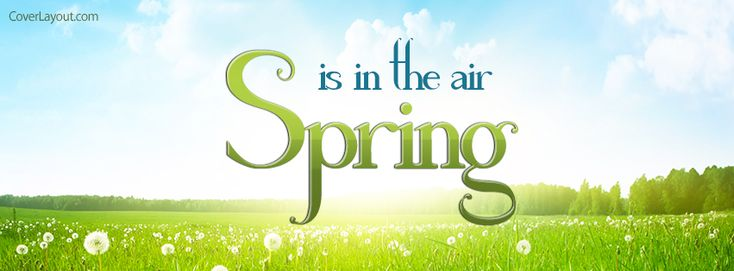 Spring Is In The Air Facebook Cover coverlayout.com