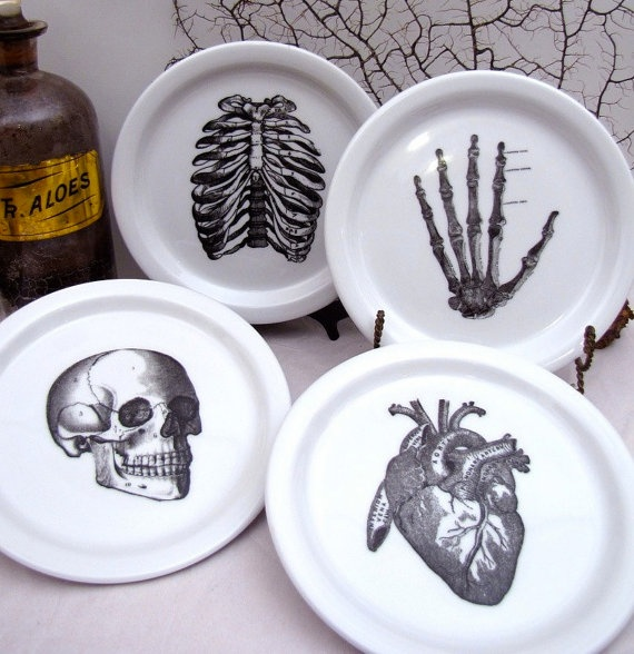 4 Anatomical Dishes Plates Skull Skeleton Hand Rib by AustinModern, $50.00