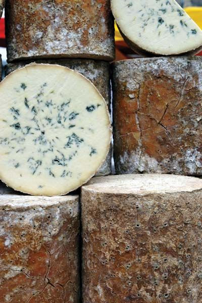 Stilton is a British cheese that can only be produced in the three counties of Derbyshire, Nottinghamshire and Leicestershire. The cheese is made from locally produced cow's pasteurised milk. The distinctive feature of this cheese is magical blue veins radiating from the center of the cheese.