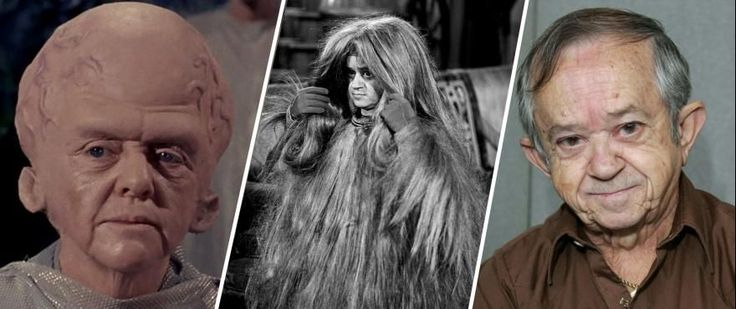"""Catching Up with """"The Cage"""" Talosian Felix Silla   The Star Trek entry on Felix Silla's resume is really just a blip but what a blip. Silla a man who's been a part of The Addams Family as Cousin Itt Buck Rogers in the 25th Century as Twiki Return of the Jedi as a hang-gliding Ewok and also appeared in Battlestar Galactica a Tim Burton Batman film Indiana Jones and the Temple of Doom and so many more movies and TV shows has the distinction of appearing as a Talosian in the first Star Trek…"""