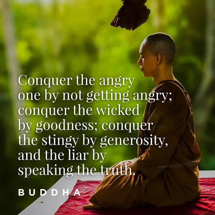 """Conquer the angry one by not getting angry; conquer the wicked by goodness; conquer the stingy by generosity, and the liar by speaking the truth.""   ― Buddha"