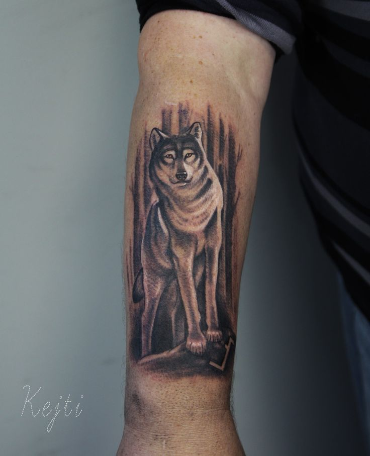 Follow me on instagram k.dumka #wolf #sleeve #tattoo #tattoos #animals #ink #inked #drawing #forest #arm #artist #art #painting #drawings