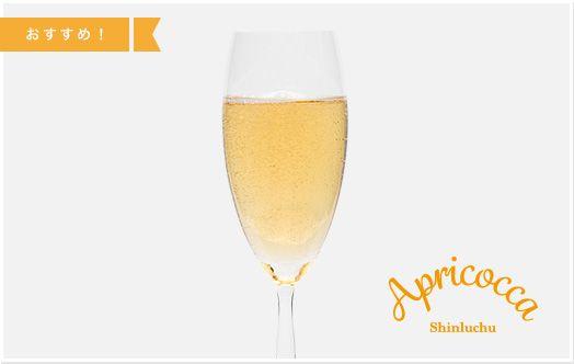 Apricocca