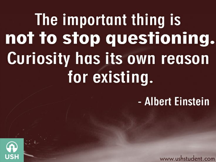 The important thing is not to stop questioning. Curiosity has its own reason for existing. - Albert Einstein