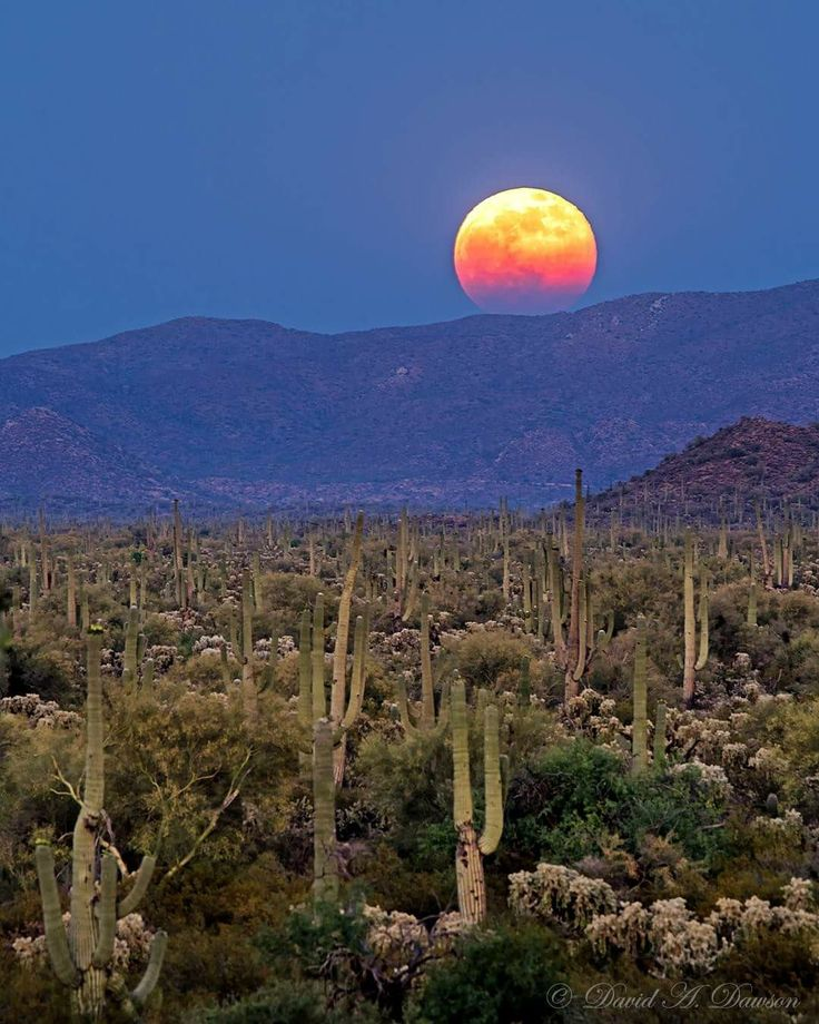 Moonrise over the desert with mountains.