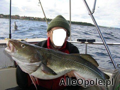 wędkowanie na morzu (Opole)