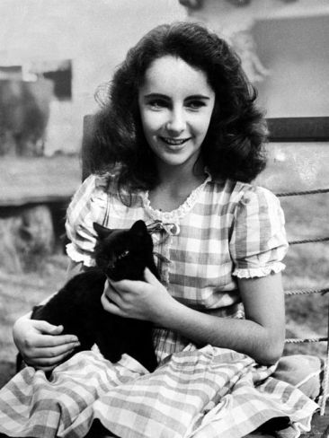 """13 Year Old Actress Elizabeth Taylor Outside, Holding One of Her Many Pets, a Black Cat Named Jill,"" Photographic Print by Peter Stackpole. -- ""This image from the archives of LIFE magazine first appeared on Feburary 26, 1945."" -- This is the youngest ""Liz"" photo of several on this board."