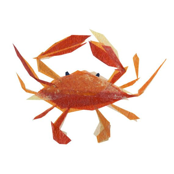clementine crab print by tinyfawn on Etsy, $14.00