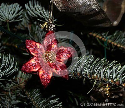 Christmas background - Christmas ornament and fir twigs