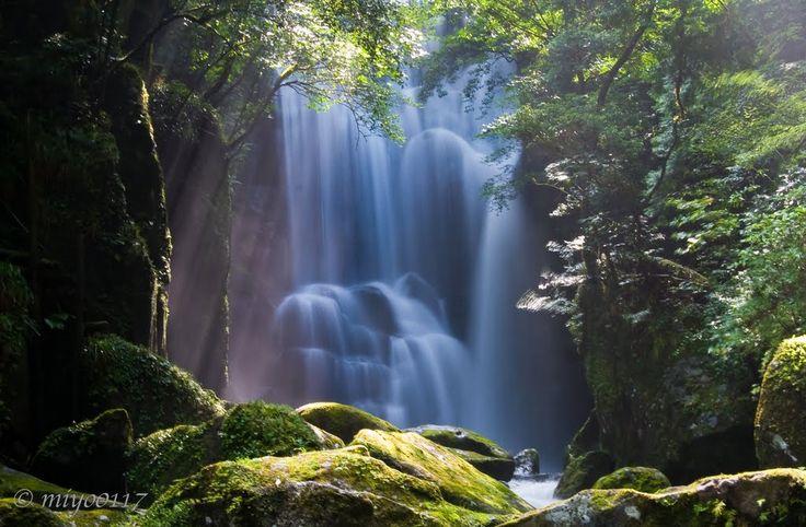 桑の木滝 Kuwanoki taki waterfall