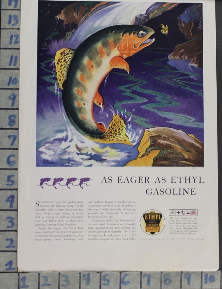"""Item specifics   Seller Notes: """"""""A""""  VERY GOOD, PERFECT FOR FRAMING AND DISPLAYING.""""       UPC:   Does not apply        1931 SPORT FISH GOLDEN TROUT STREAM AUTO ETHYL GASOLINE ILLUS BURGER AD CX79  Price : 21.95  Buy it now price : ... - #Fishing https://lastreviews.net/sports-fitness/fishing/1931-sport-fish-golden-trout-stream-auto-ethyl-gasoline-illus-burger-ad-cx79/"""