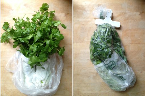 Kitchen Tip: How to Store Fresh Parsley, Cilantro and Other Herbs to Keep Them from Going Bad   Be Well Philly