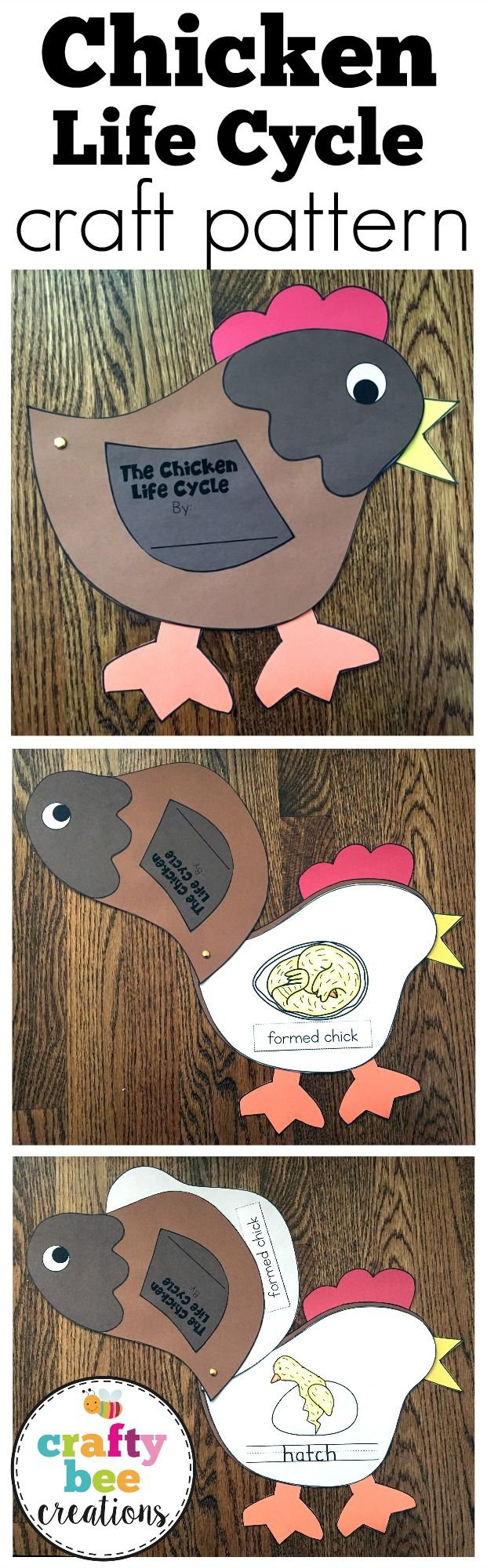 This is a fun Chicken Life Cycle craft where students will get to apply the different stages of the life cycle to the craft by putting them pages in order.