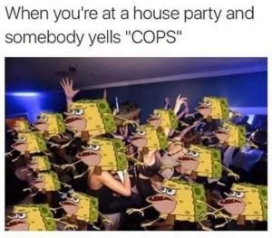 spongebob caveman memes | ... somebody yells cops save to folder memes party memes jokes about cops