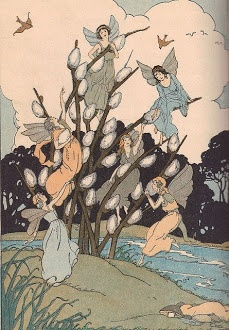 pussywillow faeries