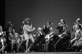 Flamenco - Ramón Zabalza - Prioridad a lo real