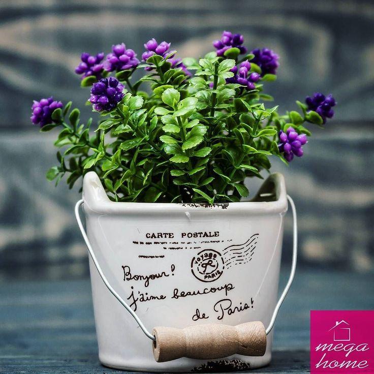Modern ve şık yapma çiçekler sadece 15 tl  #çiçek #madeinanatolia #eskişehir #dekor #dekorasyon #evdekorasyonu #dekorasyonfikirleri #tasarım #evim #guzelevim #sunum #sunumönemlidir #hediye #ilginçhediyeler #hediyelikeşya #instamutfak #mutfak #kampanya #çeyiz #çeyizhazırlığı #cicibici #esse #cicibici #pinkmore #madamecoco #englishhome #perabulvari #mudo #tantitoni   http://bit.ly/29uxHFc
