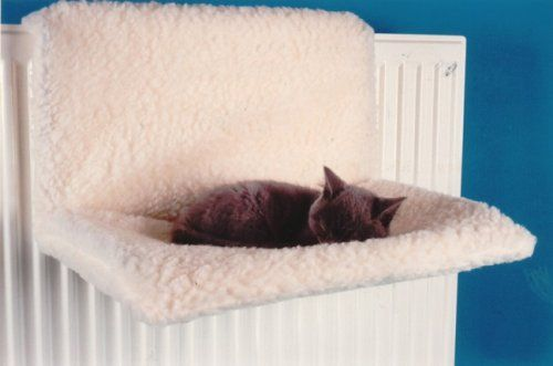 Radiator Cat Bed Quality Pet Products http://www.amazon.co.uk/dp/B000EDWHZ4/ref=cm_sw_r_pi_dp_-MSGwb1FB0G6R