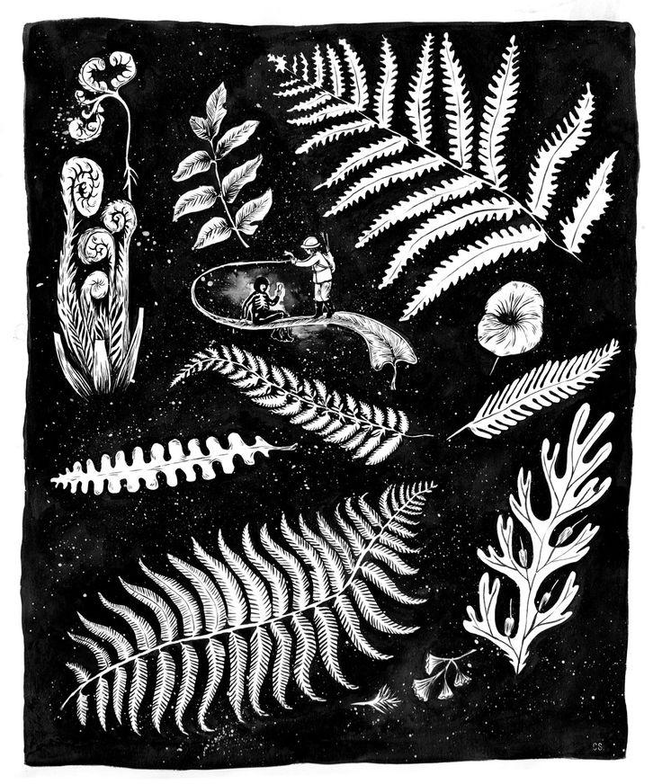 Linternas y bosques   Expediciones a la literatura infantil y juvenil   Página 3