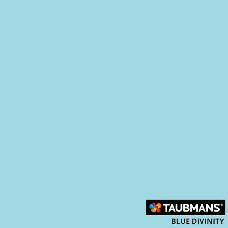 #Taubmanscolour #bluedivinity