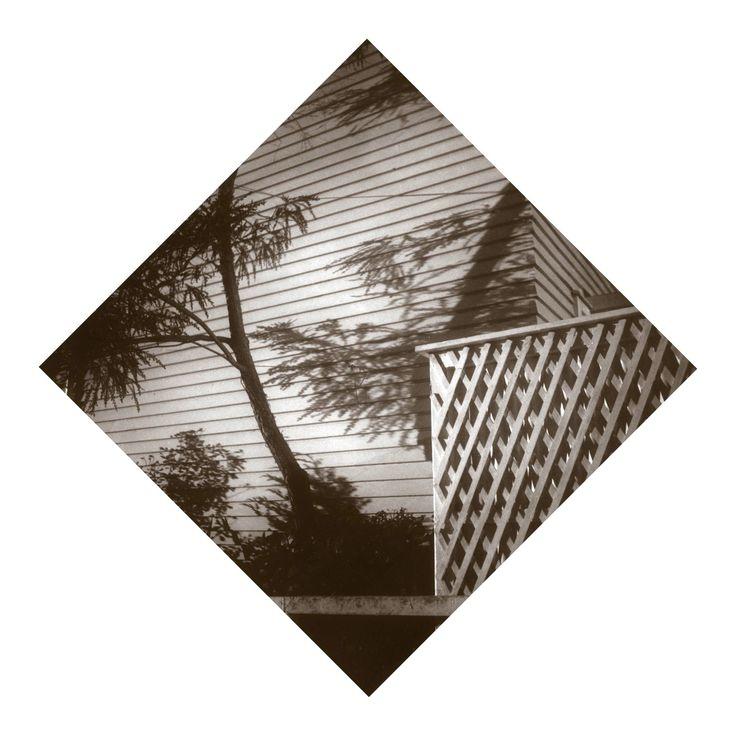Lattice Fence and Shadows