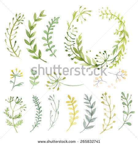 Set of flowers painted in watercolor on white paper. Sketch of flowers and herbs. Wreath, garland of flowers. Vector watercolor