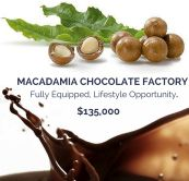 chocolate factory for sale sunshine coast