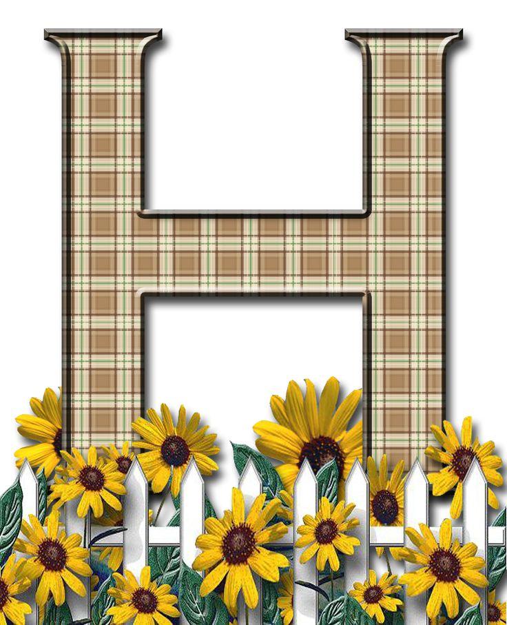 Letra con verja floral.....H