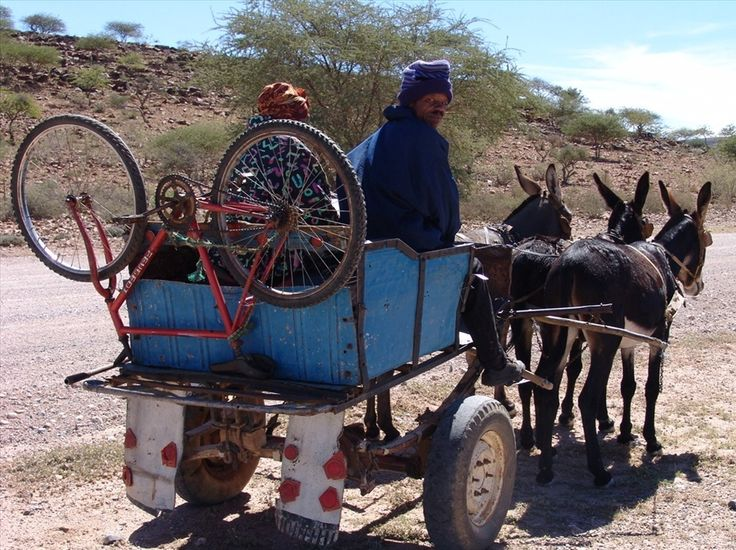 Donkeycart with bicycle - #Namibia #Africa #Transport