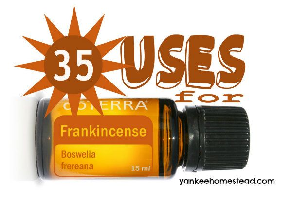 Check out these 35 amazing ways to use Frankincense, one of my very favorite essential oils.