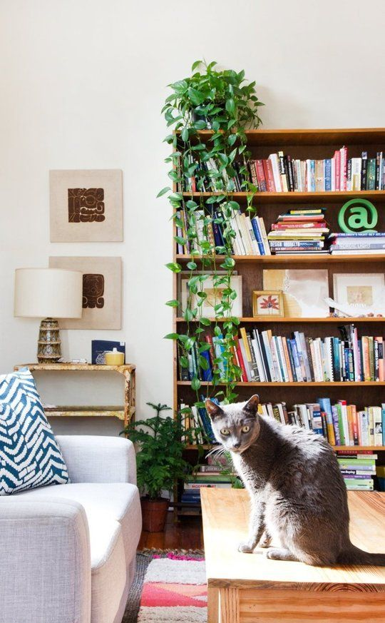 Apartment Therapy Editors Share the Thing They Love Most About Their Home | Apartment Therapy